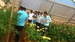 Horticulture Training Services