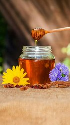 Pure Kashmiri Honey