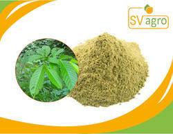 Natural Banaba Leaf Extract Powder