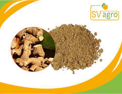 Valeriana Officinalis Extract