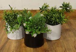 Galvanised Indoor- Outdoor Planters Set Of 3