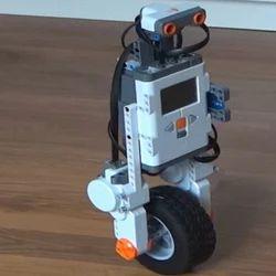 1 Wheel Balancing Robot