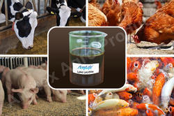 AmiLife Lyso Soya Lecithin Liquid Feed Grade