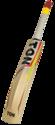 SS Ton Maximus Kashmir Willow Cricket Bats