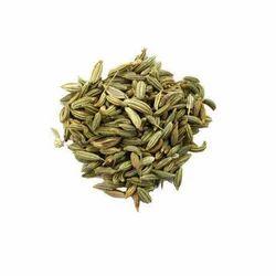 Fennel Seed Oleoresin