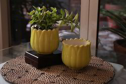 Green Ceramic Flower Planter