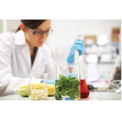 Sensory Testing of Food