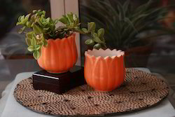 Orange Ceramic Flower Planter ( Small )
