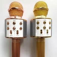 Wireless Karaoke Mic (With SD Card)