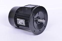 0.5HP Three Phase AC Induction Motors