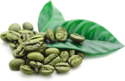Green Coffee 50% Extract