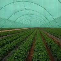 Garden Shade Net