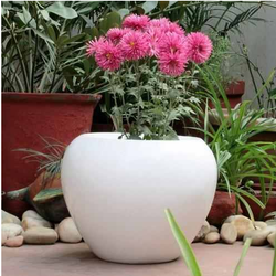 Large Size Garden Planter