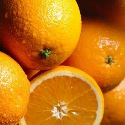 Orange Oil 5 Fold