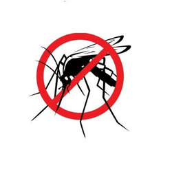 Pest Control Services for Mosquito