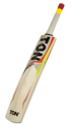 SS Ton Tennis Kashmir Willow Cricket Bats