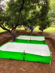 Azolla Bed 12x10x1 Size