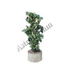 Zed Tree Wealth Tree