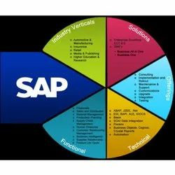 SAP Implementation & Roll Out