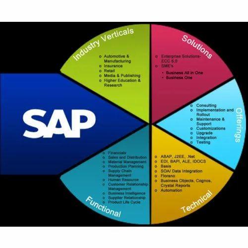 SAP B1 Software Implementation Service - CFO Support Service