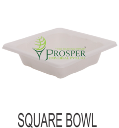 Biodegradable Round Bowl And Square Bowl