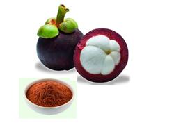 Mangosteen Extract 10%