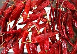 Red Chilli Endo 5