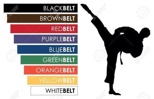belts in karate