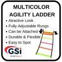 Multicolor Agility Ladder