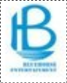Bluehorse Entertainment Private Limited