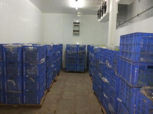 & Cold Room - Cold Storage Manufacturer from Delhi