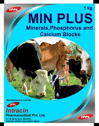 Minerals, Phosphorus & Calcium Block