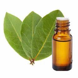 Coriander Oleoresin (Green) 1.5 % VOC