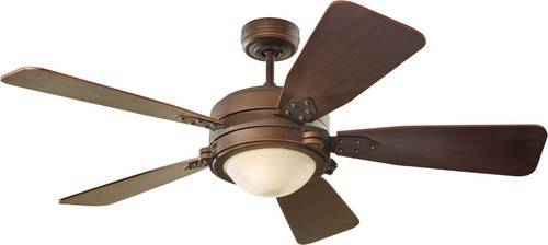 Battery Operated Ceiling Fan Manufacturer From Delhi