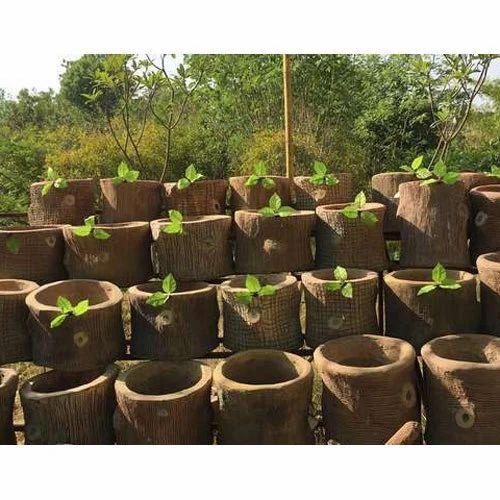 Garden pots rcc garden flower pots manufacturer from ahmedabad rcc garden flower pots workwithnaturefo