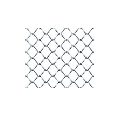 Chain Link Fencing & Crimped Wire Mesh from Delhi