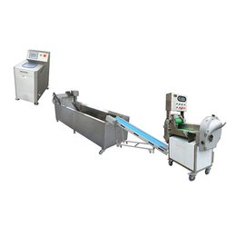 Fruit Washing Conveyor