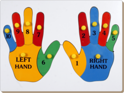 Double Hand Wooden Educational Puzzle