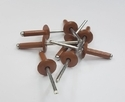 RAL 8003 Color Blind Rivets