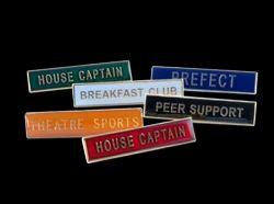 School metal badge