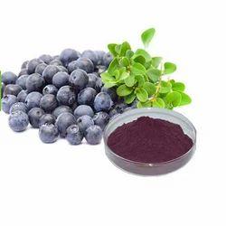 Acai Berry Herbal Extract