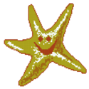 Star Cad Glass Mosaics