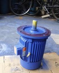 Double Reduction Worm Gear Motors
