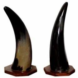 Made Horn