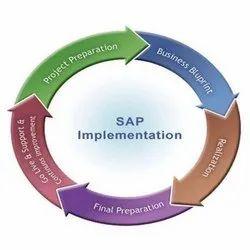 SAP Business Implementation Service