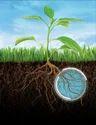 Mycorrhizal Fertilizer
