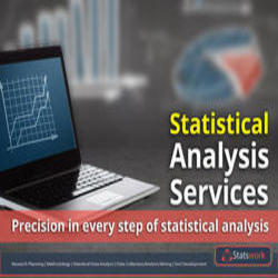 Statistical Analysis Services