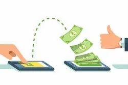 Domestic Money Remittance