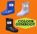 Colour Gumboots