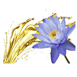 Absolutes blue lotus flower oils exporter from kannauj blue lotus flower oils mightylinksfo